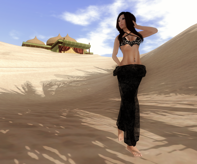 Snapshot_078